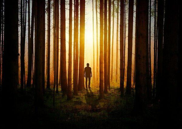 Związek człowieka z naturą